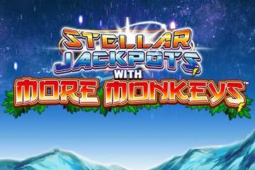 Chinese blackjack monkey